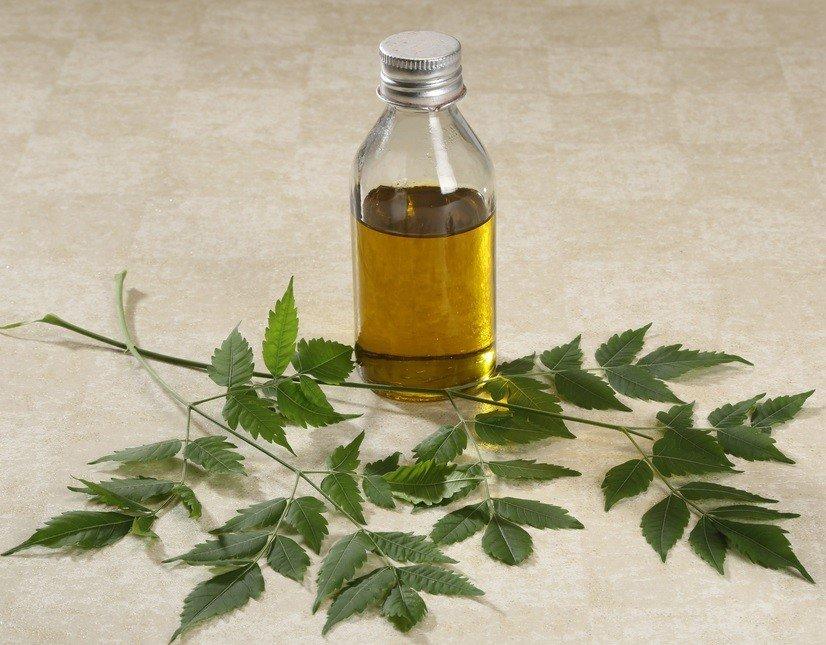 neem-oil-naturallivingideasdotcom