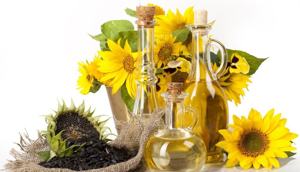 suflower-seed-oil-seedoilpressdotcom