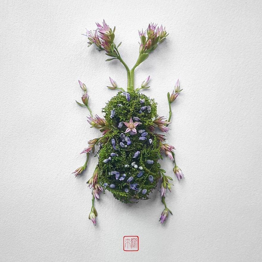 serangga dari bunga tumbuhan