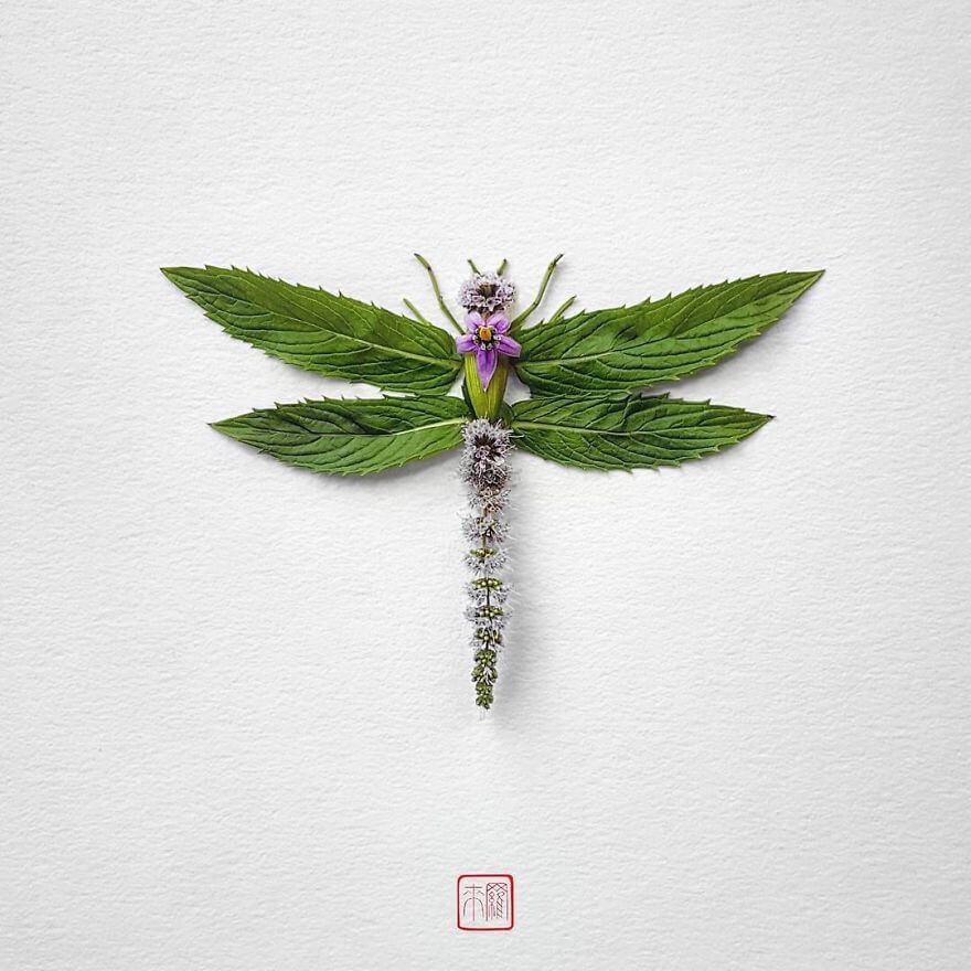 serangga dari tumbuhan bunga