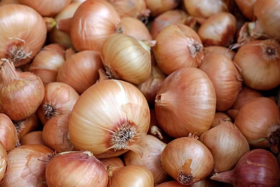 10 Makanan yang Sebaiknya Tidak Disimpan di Dalam Kulkas bawang bombay