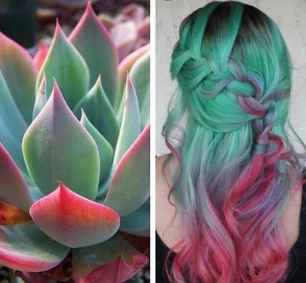 Succulent Hair and Nail, Tren Rambut dan Kuku Kekinian: Yay or Nay?