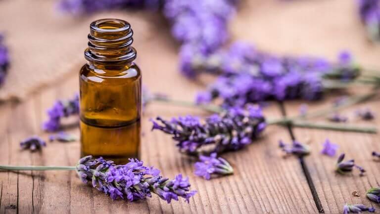 8 Manfaat Ajaib dari Minyak Esensial Lavender