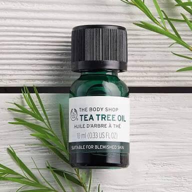 5 Rekomendasi Produk Tea Tree yang Cocok dengan Berbagai Jenis Kulitmu