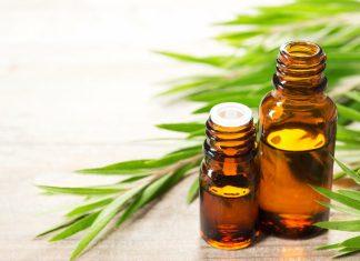 Beberapa Cara Memanfaatkan Tea Tree Oil