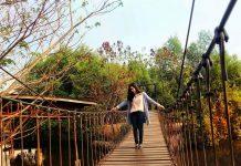 Deretan Wisata Alam di Jakarta, Alternatif Liburan Sejuk Tak Jauh dari Ibu Kota