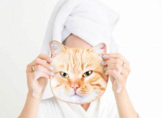 Handuk Unik dengan Bentuk Wajah Kucing dan Anjing