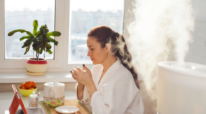 Yuk, Kenalan dengan Humidifier dan Apa Manfaatnya untuk Kesehatan