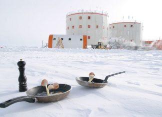Begini Rasanya Memasak di Antartika …