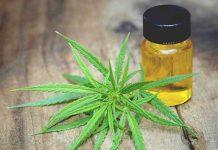 Apa Manfaat CBD Oil?