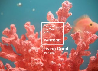 Living Coral Menjadi Pilihan Pantone Color of the Year 2019