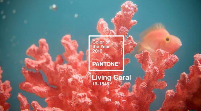 Living Coral Menjadi Pilihan Pantone Color of the Year 2019