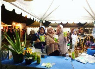 Gunungkidul Tawarkan Desa Wisata Edukasi Lidah Buaya