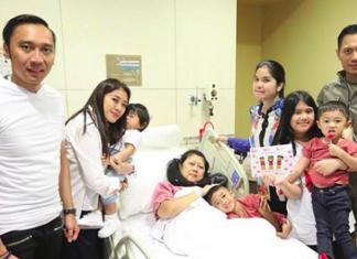 Inilah Gejala-Gejala Kanker Darah, Penyakit yang Menggerogoti Ibu Ani Yudhoyono
