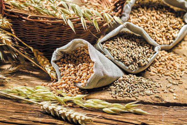 Продажа зерновых культур и кормов