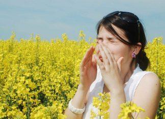 Cegah Alergi Serbuk Sari Kambuh Dengan Cara Ini