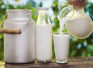 Susu Skim vs Susu Murni, Mana yang Lebih Sehat?