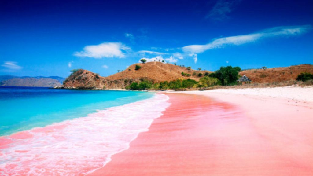 Destinasi Pantai dengan Pasir Pink di Seluruh Dunia