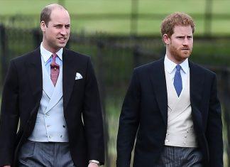 Pangeran William Akan Beri Dukungan Untuk Gugatan Pangeran Harry Pada Media