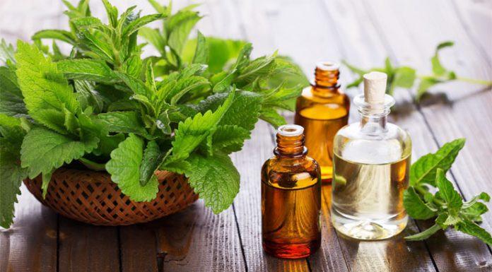 Apakah Tea Tree Oil Masih Jadi Pilihan Terbaik Untuk Atasi Jerawat?