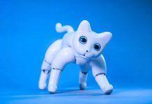 Project MarsCat, Robot Kucing Masa Depan