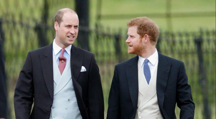 Sahabat Dekat Akui Ada Perselisihan Antara Prince William dan Harry: