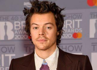 Harry Styles Menjadi Korban Penodongan Dengan Pisau di Hari Valentine