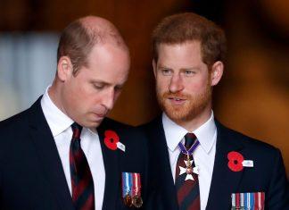 Queen Elizabeth Minta Pangeran William dan Pangeran Harry Terlihat Akur Di Acara Mendatang