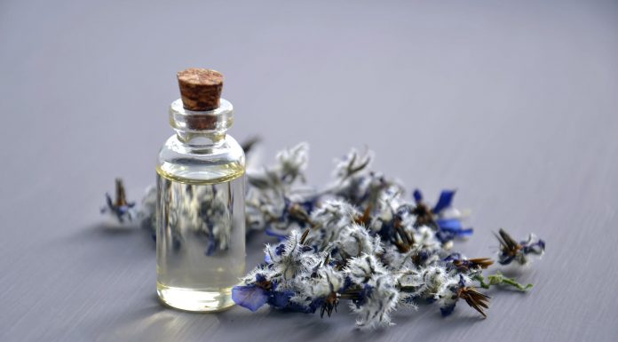 7 Parfum dengan Aroma Paling Menawan di Tahun 2020