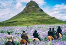 Atasi Krisis Ekonomi Selama Lockdown Kedua, Islandia Buka Pintu untuk Warga Asing