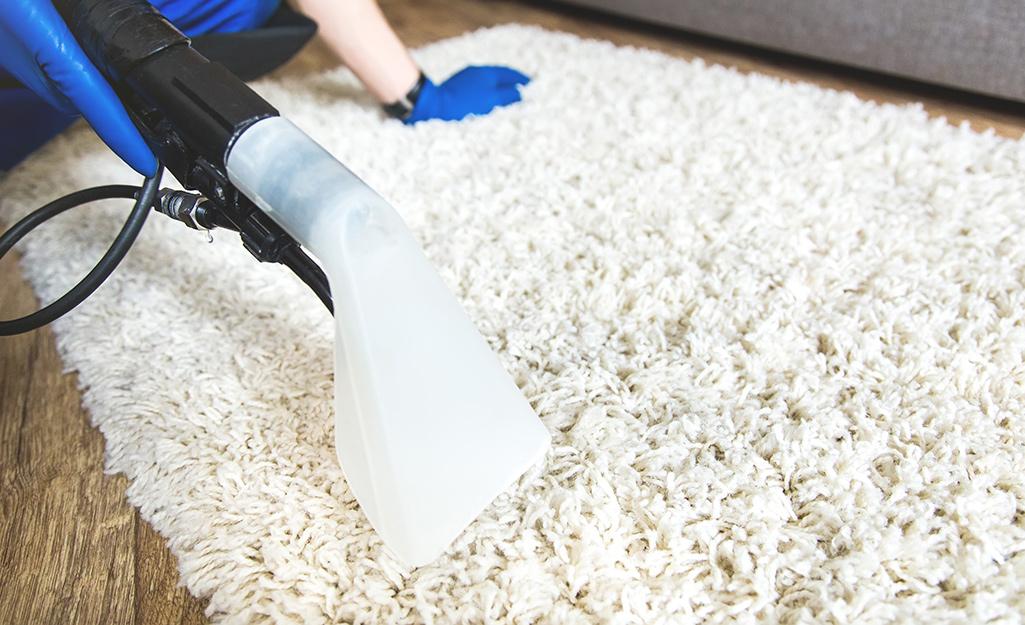Begini Cara Mudah Bersihkan Karpet Bulu Kesayanganmu
