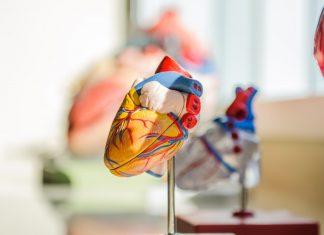 Kelola Hipertensi untuk Cegah Gagal Jantung