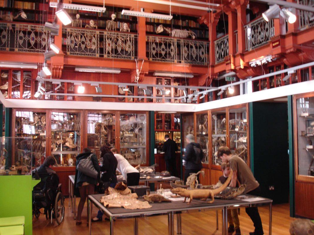 Intip Museum Unik di Inggris Ini, Yuk!
