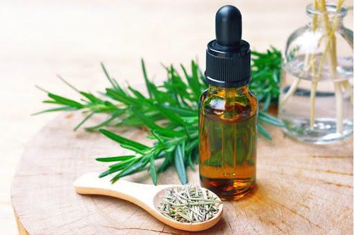 Rambut Rontok? Coba Gunakan Essential Oil dari Rosemary untuk Mengatasinya